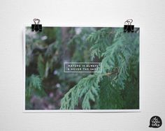 Nature is Always and Never the Same Print by The Little Talks. The print measures 5in. by 7in.