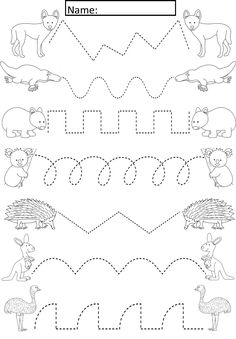 Australian Animals Tracing Lines Activity For Early Years/Special Needs  Cute activity where students join the Australian Animals to their partner on the other side of the page. The animals are black and white outlines so the children can also color the animals as part of the task.