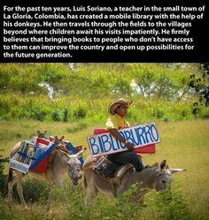 book donkey
