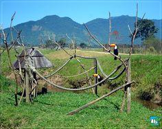 É em uma área de 300.000 (m²) que vivem aproximadamente 500 animais! <3  Reserve já → http://portobelloresort.com.br/promo/promocao-especial-abril/