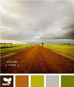 Wide Open Spaces Inspiration from Design Seeds #Seeds #Road #Color