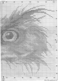 Gallery.ru / Photo # 333 - Birds - katik22