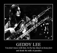 Geddy Lee dined on honeydew and drank the milk of paradise. Great Bands, Cool Bands, Rush Concert, Rush Band, Geddy Lee, Alex Lifeson, Neil Peart, Canadian Boys, Rockn Roll