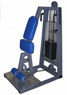 True Natural Bodybuilding: pictures of gym equipment and weight machines: standing leg curls Diy Gym Equipment, No Equipment Workout, Leg Curl Machine, Home Gym Machine, Dream Home Gym, Build Muscle Mass, Gym Accessories, Natural Bodybuilding, Garage Gym