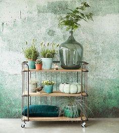 Het is voorjaar dus tijd voor groen! Hebben jullie al plantjes in huis? #magazijnshopper #interior #interieur #interieurinspiratie
