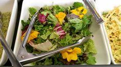 Colourful salad from Aberystwyth Arts Centre cafe. Nasturtiums! Tasty retro food.