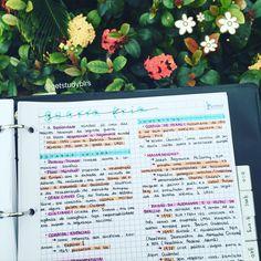 10.10.2016// a maníaca das flores retorna com anotações sobre guerra fria // aproveitando esse post pra dizer que, depois de várias pessoas repostarem minhas fotos (e além de não dar crédito, fingirem que são suas), vou começar a colocar meu user nelas. Não é a melhor coisa do mundo, mas é triste que é necessário. || #studying #instastudy #studyblr #studyspo #studygram #estudo #estudando #resumo ||