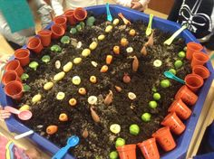 3 Year Old Activities, Nursery Activities, Farm Activities, Olivers Vegetables, Early Years Maths, Tuff Spot, Tuff Tray, Little Red Hen, Veggie Delight