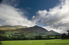 Ullock Pike, Bassenthwaite, Cumbria