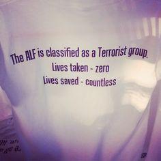 ALF (Animal Liberation Front) est classé groupe terroriste. Vies prises : zéro ; vies sauvées : innombrables !