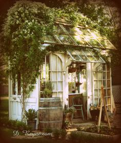 Every thought about how to house those extra items and de-clutter the garden? Building a shed is a popular solution for creating storage space outside the house. Whether you are thinking about having a go and building a shed yourself Greenhouse Shed, Greenhouse Gardening, Small Greenhouse, Gardening Blogs, Greenhouse Wedding, Organic Gardening, Outdoor Rooms, Outdoor Gardens, Outdoor Living