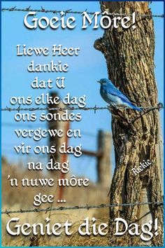 Morning Blessings, Good Morning Wishes, Good Morning Quotes, Lekker Dag, Good Morning Inspiration, Afrikaanse Quotes, Goeie More, Angel Prayers, Prayer Quotes