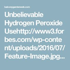 Unbelievable Hydrogen Peroxide Usehttp://www3.forbes.com/wp-content/uploads/2016/07/Feature-Image.jpgs In Garden You Should Know | Balcony Garden Web
