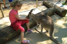 12 Things To Do In Singapore With Kids via @lajollamom