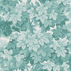 Cole & Son Wallpaper at discount prices. Cole & Son has a love for big and bold patterns. is your authorized dealer for Cole & Son Wallpaper. Cole And Son Wallpaper, Green Wallpaper, Print Wallpaper, Pattern Wallpaper, Leaves Wallpaper, Scenic Wallpaper, Feature Wallpaper, Nursery Wallpaper, Wallpaper Online