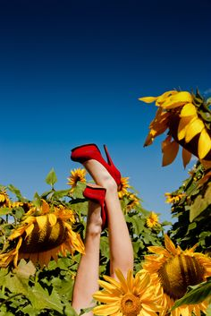 Just a cool shoe image. Sunflowers by flaviosotto.deviantart.com