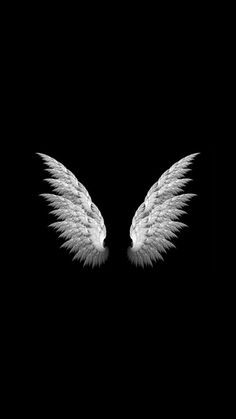Black Wallpaper Free is wallpaper - wallpaper trends - pic pictures- wij voor foto's, Wings Wallpaper, Wallpaper Free, Angel Wallpaper, Dark Wallpaper, Galaxy Wallpaper, Wallpaper Ideas, Black And White Wallpaper Iphone, Black Background Wallpaper, Black And White Background