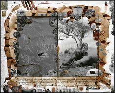 Selection of Works – Peter Beard Studio