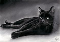 Charcoal Cats Drawings   Source: http://www.ebay.com/itm/Original-Kohle-Zeichnung-schwarze ...