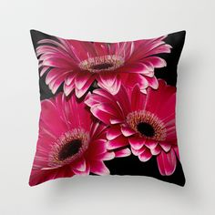 Triple Crown of Red Gerbera Daisys Throw Pillow by F Photography and Digital Art - $20.00