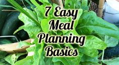 How to Meal Plan - Healthy Meals on a Budget