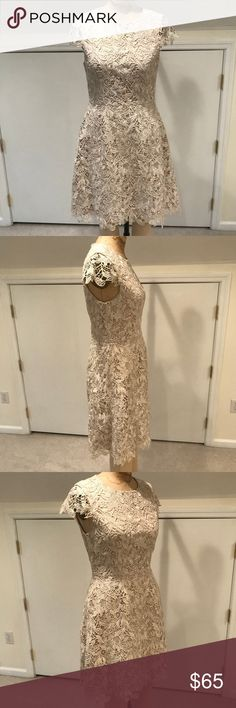 "Eliza J Cap Sleeve Metallic Lace A-Line Dress Eliza J cap sleeve, metallic gold ivory lace, A-Line dress with nude contrast lining. Dress length 36"". Sleeve length 4"". Eliza J Dresses"