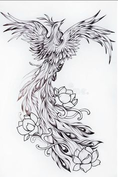 Black And White Sketch Of A Beautiful Phoenix With Flowers. Stock Illustration - Illustration of inspiration, drawing: 81881355 Phoenix Tattoo Feminine, Phoenix Back Tattoo, Phoenix Bird Tattoos, Phoenix Tattoo Design, Phoenix Art, Rising Phoenix Tattoo, Black Tattoos, Body Art Tattoos, Tribal Tattoos