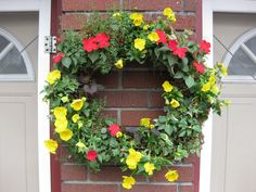 Living Wreath  Ivy, Pansies, Potato Vine Thyme, Mint, Petunias, Bacopa etc - Let the Imagination Run Free !
