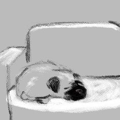 By Jarrett J. Krosoczka: sleepy pug  #pugs #puglife #daily sketch #jjkdailysketch #writinglife #graphicnovels #lunchlady