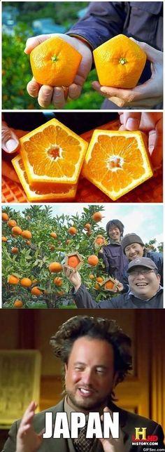Japan doing strange Fruits since ... ever XD