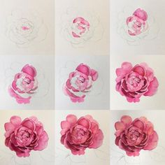 I haven't shared a floral progress shot for a while. So here is one of my favourite roses to inspire your Monday. Peony Painting, Painting & Drawing, Watercolor Paintings, Rose Paintings, Artistic Wallpaper, Rose Wallpaper, Trendy Wallpaper, Art Floral, Watercolor Rose