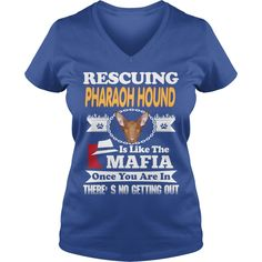 Rescuing PHARAOH HOUND Is The Like Mafia #gift #ideas #Popular #Everything #Videos #Shop #Animals #pets #Architecture #Art #Cars #motorcycles #Celebrities #DIY #crafts #Design #Education #Entertainment #Food #drink #Gardening #Geek #Hair #beauty #Health #fitness #History #Holidays #events #Home decor #Humor #Illustrations #posters #Kids #parenting #Men #Outdoors #Photography #Products #Quotes #Science #nature #Sports #Tattoos #Technology #Travel #Weddings #Women