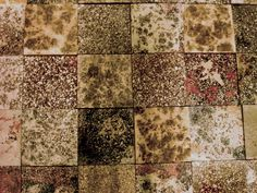 Mosaic Protocrete