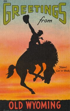 Greetings from Old Wyoming Postcard | Lake County Discovery Museum ...