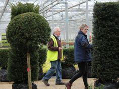 Hillier head plantsman, Ricky Dorkay and designer Sarah Eberle inspect plants
