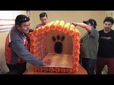 Pet Hotel, Diy Dog Bed, Plastic Bottle Crafts, Pet Furniture, Pumpkin Crafts, Holiday Pictures, Diy Home Crafts, Dog Houses, Diy Stuffed Animals