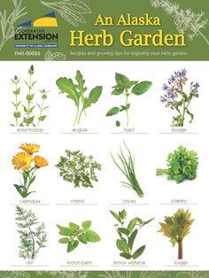 Znalezione obrazy dla zapytania herb