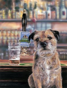 "BORDER TERRIER DOG FINE ART LIMITED EDITION PRINT ""Border Bitter"" by Paul Doyle uk.picclick.com"