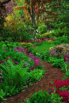 Path to new Zenny Lenny Garden - EASY w/ mulch and glow-in-dark stone border