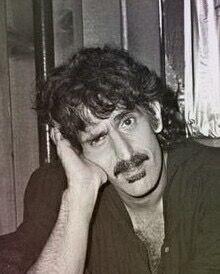 Zappa Frank Zappa, Mish Mash, The Man, Jazz, Mothers, Audio, Hearts, Felt, Healing