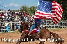 [BLOG] 4th of July When You Have Horses at Home - At Home with Horses | How do your horses react to fireworks? #horses #horsehealth #behavior #fireworks: