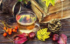 Herbata, Liście, Szyszki, Jarzębina, Kasztany, Książki, Kompozycja