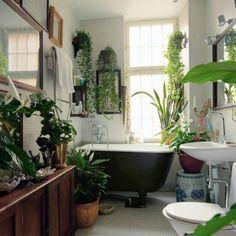 """The Best Bathroom Plants For Your Interior - The """"green"""" bathroom - Best Bathroom Plants, Tropical Bathroom, Garden Bathroom, Botanical Bathroom, Bohemian Bathroom, Bathroom Green, Bathrooms With Plants, Small Bathrooms, Zen Bathroom"""