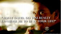 Image result for ncis quotes