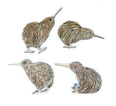 Set+of+4+Small+Pine+Kiwi+Birds http://www.shopenzed.com/set-of-4-small-pine-kiwi-birds-xidp1363596.html