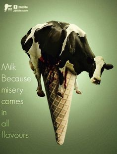 Dairy is cruel, ditch dairy, go vegan.