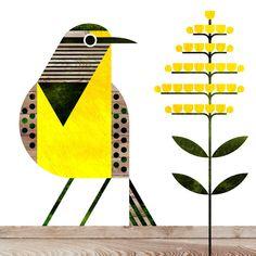 scott partridge – state bird and flower – Nebraska – Western Meadowlark and Gold… – Bird Supplies Scandinavian Folk Art, Scandi Art, Bird Quilt, State Birds, Bird Illustration, Chalk Art, Bird Art, Collage Art, Art Drawings