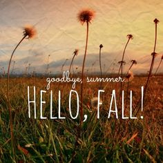 Hello Fall so glad you're here!!!
