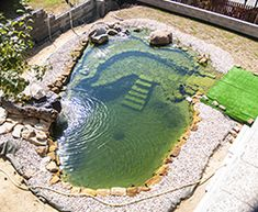 10 Ways to Make Your Fence Beautiful Natural Swimming Ponds, Natural Pond, Swimming Pools Backyard, Backyard Pool Designs, Small Backyard Pools, Ponds Backyard, Small Pool Design, Pond Design, Piscine Diy