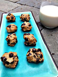Chocolate Chip Cookie Dough Bites (Raw, Paleo, Vegan)--Mary Vance, NC